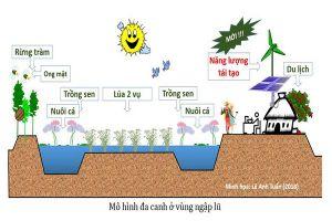 ĐBSCL trước thách thức của biến đổi khí hậu