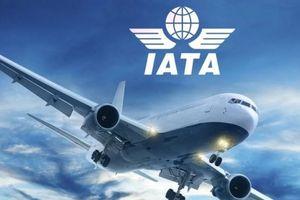 Triển vọng sáng của ngành hàng không toàn cầu trong năm tới