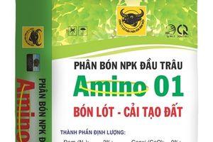 Bón phân Đầu Trâu nano hữu cơ cho ngô, lúa và bắp cải