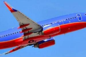 Mỹ: Máy bay quay đầu vì một… quả tim người