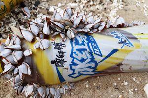 Rác chữ Trung Quốc 'ngập tràn' biển Đà Nẵng: Đã bị xả xuống biển từ lâu
