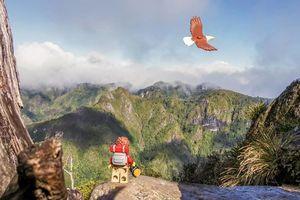 Theo chân anh chàng Lego khám phá vẻ đẹp tiềm ẩn của xứ sở kiwi