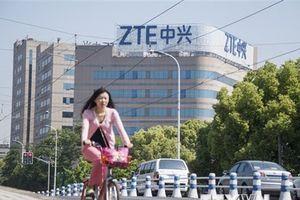 Tập đoàn ZTE đánh mất hợp đồng viễn thông lớn nhất tại Đức