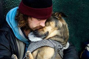 15 bức ảnh cảm động chứng minh chó là động vật trung thành nhất hành tinh