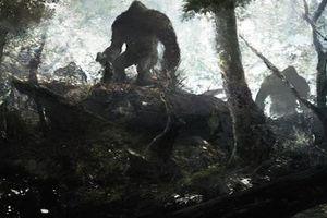 Những bí ẩn trong rừng rậm Amazon đến nay chưa có lời giải
