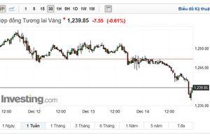 Ngày 14/12: Thị trường kim loại biến động mạnh