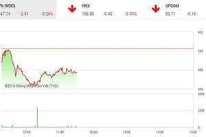 Phiên sáng 14/12: Cổ phiếu P khởi sắc, thị trường vẫn chìm trong sắc đỏ