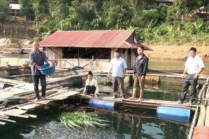 Dân tái định cư xã Chiềng Bằng giàu lên từ nghề nuôi cá lồng bè trên hồ thủy điện