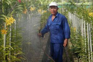 TP.Hồ Chí Minh: Tiếp sức nông dân nâng cao thu nhập