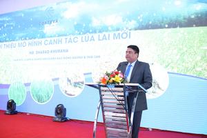 Công ty Mỹ giúp nông dân Việt Nam ứng dụng mô hình canh tác lúa lai mới