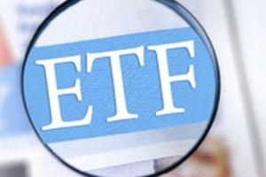 Review VNM ETF: GEX được thêm vào chỉ số MVIS Vietnam Index