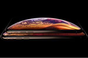 Một khách hàng kiện Apple vì thiết kết tai thỏ trên iPhone XS và XS Max