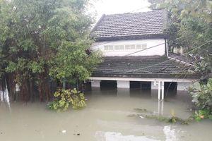 Quảng Nam: 4 người tử vong, thiệt hại hơn 126 tỷ đồng do mưa lũ