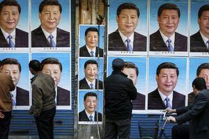 Tuyên bố đả hổ thành công mỹ mãn, Trung Quốc ý gì?