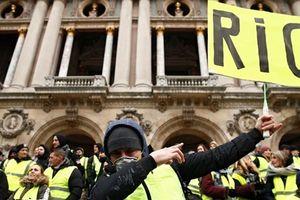 Châu Âu rối vì biểu tình áo vàng lan nhanh khó tưởng