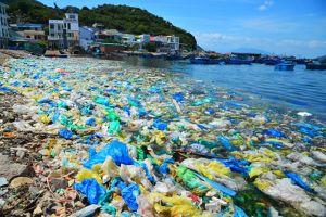 Bắt tay xây dựng kế hoạch hành động quốc gia quản lý rác thải nhựa đại dương
