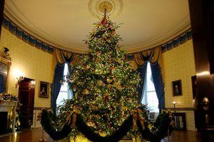 Lịch sử 80 năm cây thông Giáng sinh Nhà Trắng