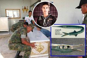 Binh sĩ Thái Lan bị con cá cứa cổ họng tử vong