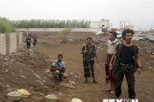 Liên hợp quốc kêu gọi các bên tại Yemen tuân thủ lệnh ngừng bắn