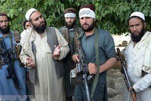 Phiến quân Taliban ở Afghanistan sẽ gặp các quan chức Mỹ tại UAE