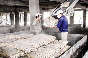 Doanh nghiệp xi măng - Rộng đường xuất khẩu, lợi nhuận khó tăng