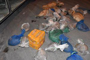 Ninh Bình: Bắt quả tang xe khách vận chuyển số lượng lớn cá thể tê tê hoang dã