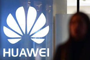 Huawei gặp nhiều sức ép mới sau vụ Giám đốc bị bắt