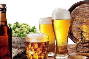 Bia Sài Gòn - Hà Nội (BSH): Giá cổ phiếu lao dốc vì lợi nhuận sụt giảm
