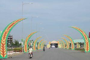 Khai mạc Festival lúa gạo lần 3 tại tỉnh Long An