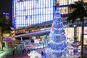 Chiêm ngưỡng cả loạt cây thông Noel 'khổng lồ' giữa Hà Nội