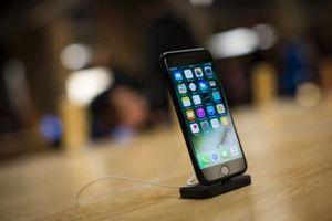 iPhone tương lai có thể trang bị công nghệ Face ID và Touch ID
