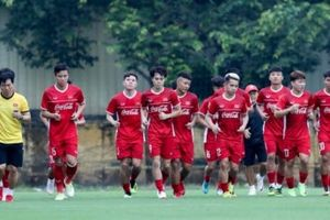 'Cánh tay trái' của HLV Park Hang-seo bất ngờ chia tay tuyển Việt Nam trước thềm Asian Cup