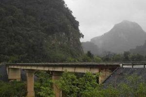 Quảng Bình: Cho thuê môi trường rừng để kinh doanh du lịch sinh thái khu vực rừng Gáo - hang Ô Rô