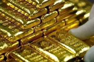 Giá vàng hôm nay 19.12: Vàng trong nước giảm ngược chiều thế giới