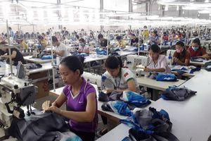 Hà Tĩnh: Công nhân Cty CP May xuất khẩu Hồng Lĩnh trở lại làm việc