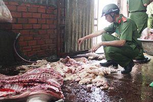 Giật mình: 2.800 con lợn chưa qua kiểm dịch mỗi ngày ở lò mổ lậu