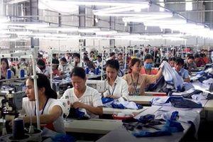 Được hứa trả toàn bộ lương, hàng trăm công nhân ở Hà Tĩnh đi làm trở lại
