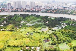 Nguyên nhân TP. Hồ Chí Minh thu hồi đất 180 dự án chậm triển khai