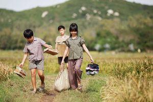 Nhận diện đạo diễn phim Việt những năm gần đây