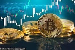 Bitcoin từ đỉnh cao đến vực sâu