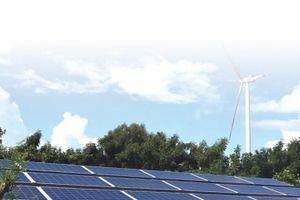 Cảnh báo làn sóng ùn ùn đầu tư vào điện mặt trời