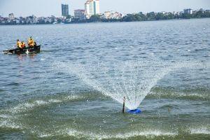 Lo ngại Hồ Tây có thể thành 'hồ chết'