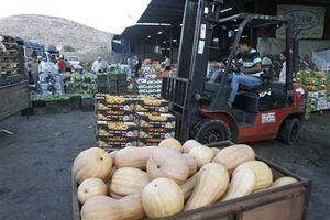 Israel ngừng nhập khẩu rau quả từ Bờ Tây