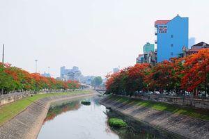 Hà Nội muốn dùng nước sông Hồng làm sạch sông Tô Lịch và hồ Tây