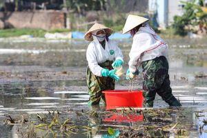 Vẫn chưa xử lý xong sự cố tràn 4.000 lít dầu ra khu dân cư ở Thanh Hóa