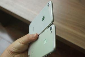 Đến lượt Đức cấm bán 2 mẫu iPhone