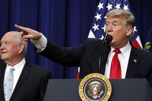 50 lá đơn từ chức và ngày cuối năm hỗn loạn của chính quyền TT Trump
