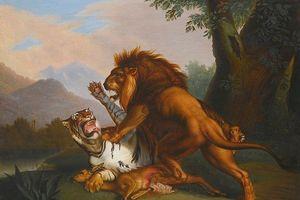 Đại chiến các loài động vật, ai là kẻ chiến thắng?