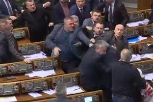 Nghị sĩ Quốc hội Ukraine lại 'choảng nhau' giữa phiên họp