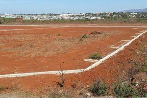 Kỷ luật Chủ tịch UBND phường vì để người dân phân lô bán đất trái phép